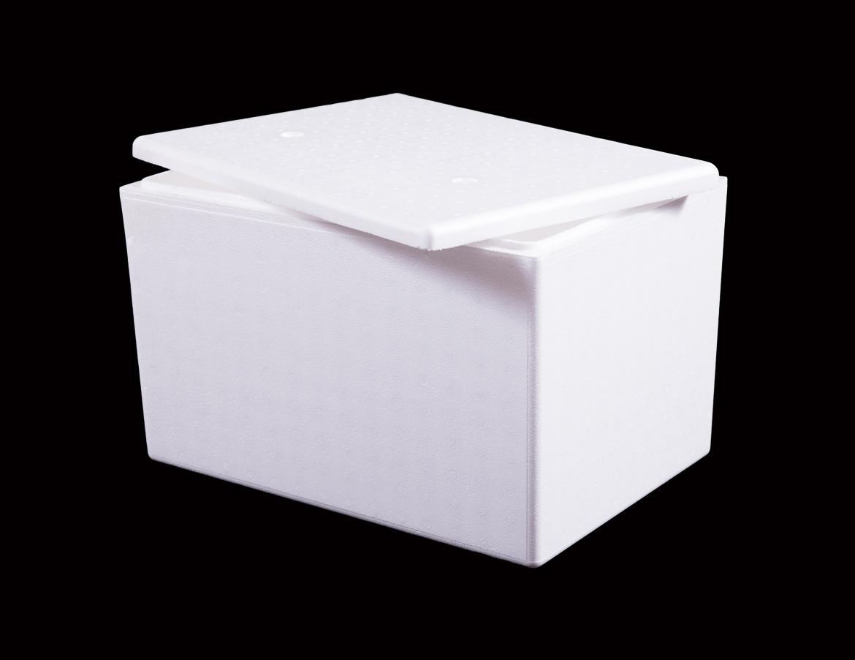 Cooler Box 22 L