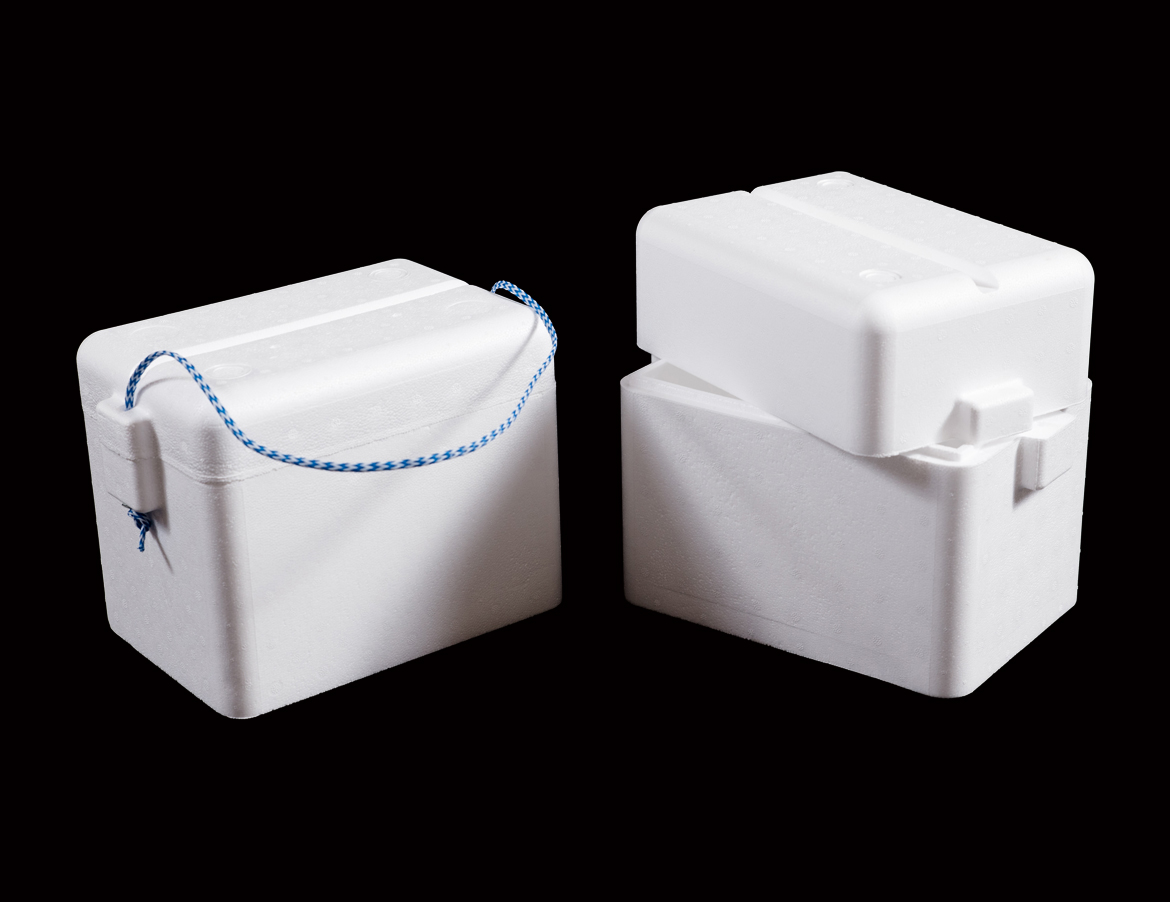 6-Pack Cooler Box