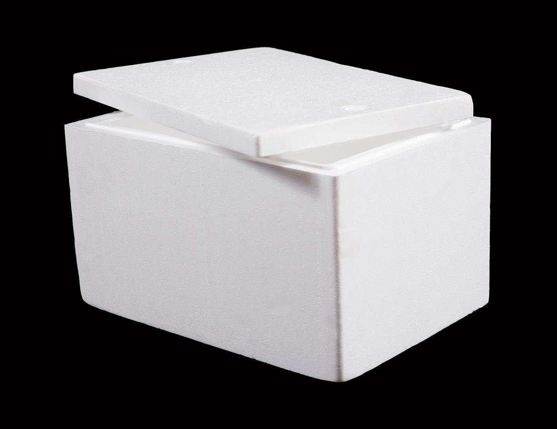 Cooler Box 8 L